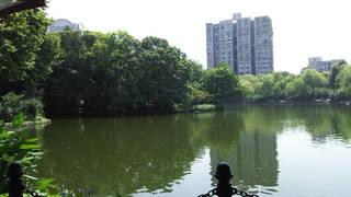 魯迅公園2.jpg