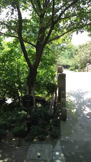 魯迅公園4.jpg